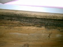 Gaps in the duct and HVAC system resulted in mold growth on some of the band joists.